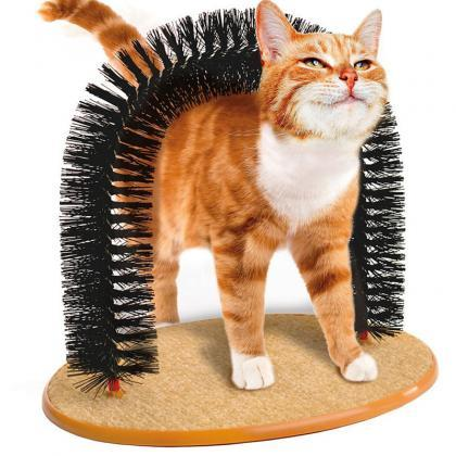 The Cat Scratch Brush Beauty Arch T..